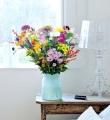 Sommer-Feeling im Herbst mit Chrysanthemen
