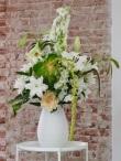 Die Lilie - die florale Sommerkönigin