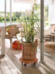 Unverzichtbar: Starke Roller für schwere Pflanzen